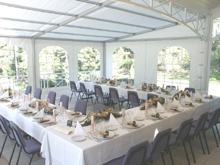 You have here an inside view of an aluminium awning for receptions