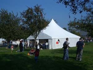 You can find here an aluminium structure marquee with pointed roof