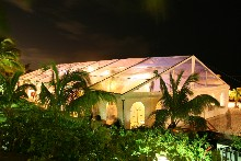 You have here a Schreiber clearspan structure with transparent roof which enables to admire palms from inside