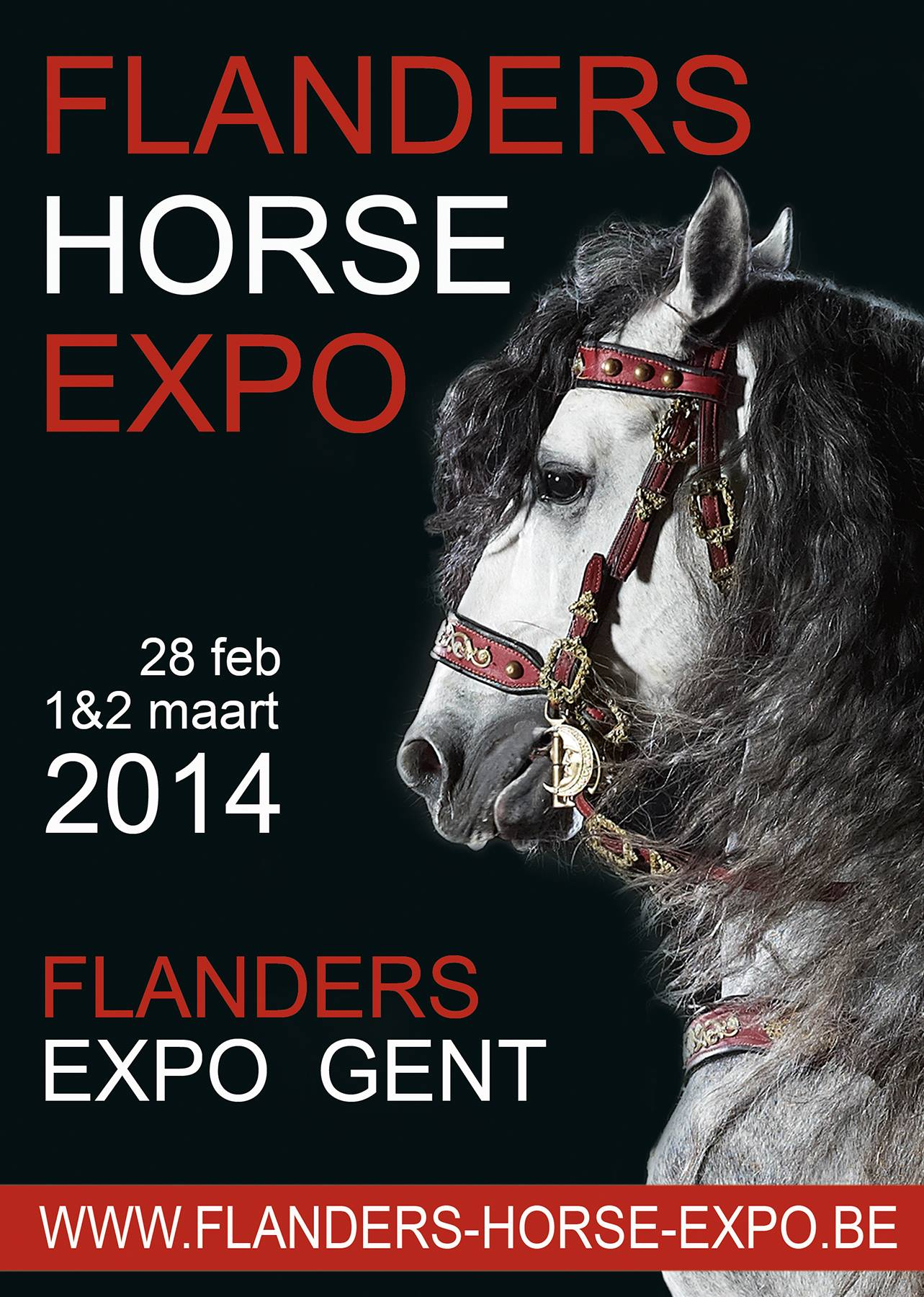 Flanders Horse Expo (Gand)